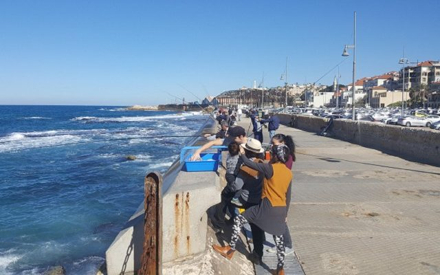 Day 2:   First Look at Tel Aviv, Jaffa, Jerusalem, The Old City, & The Western Wall…